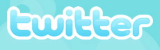 Twitter Logo Blue Rectangle Word 230 72